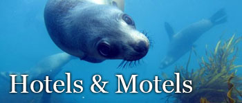 Phillip Island Hotels and Motels